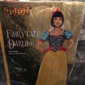 Beautiful Snow White Costume